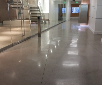 Polished Concrete Floor By BAC